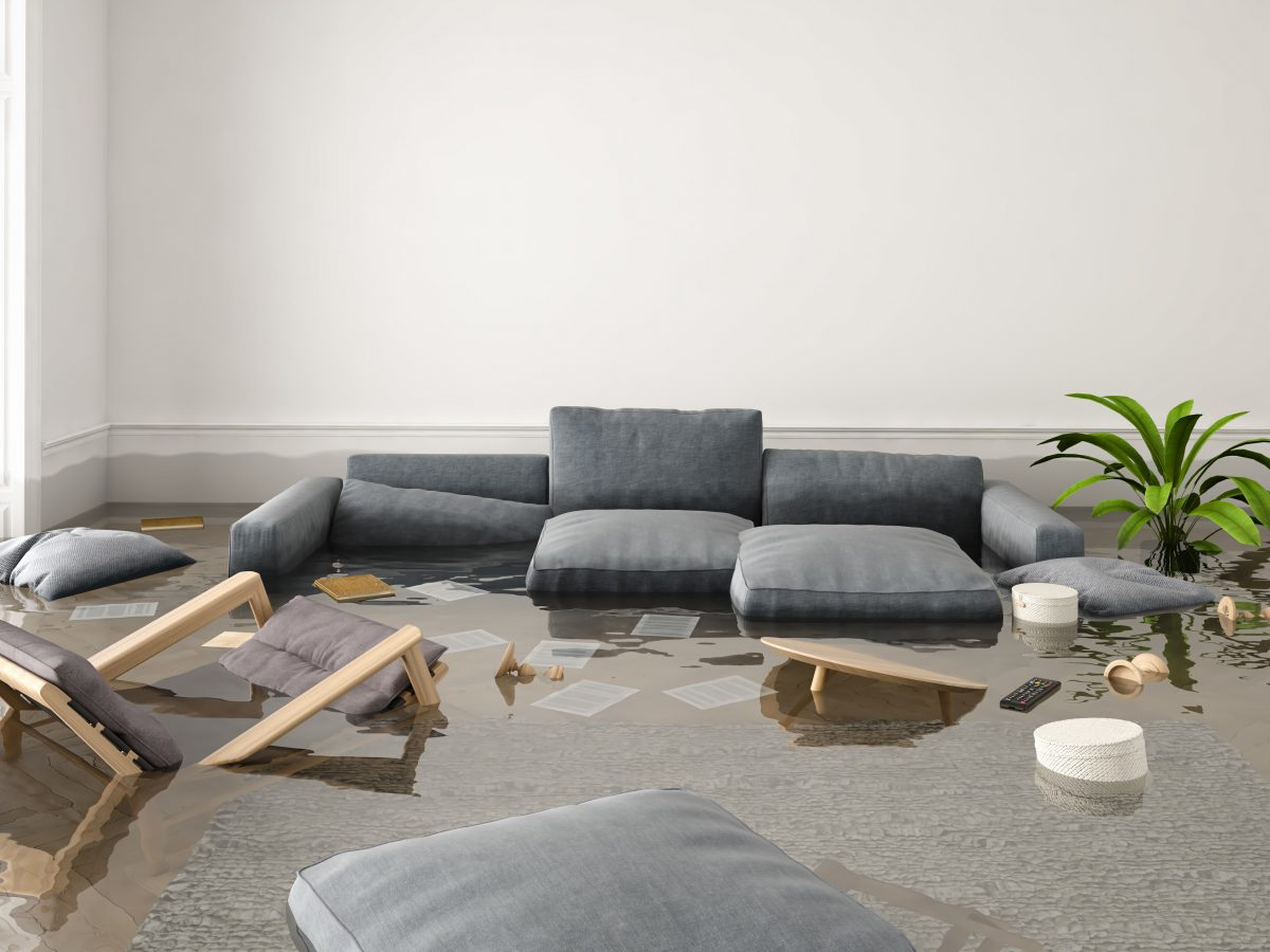 How to Choose the Right Water Damage Contractor