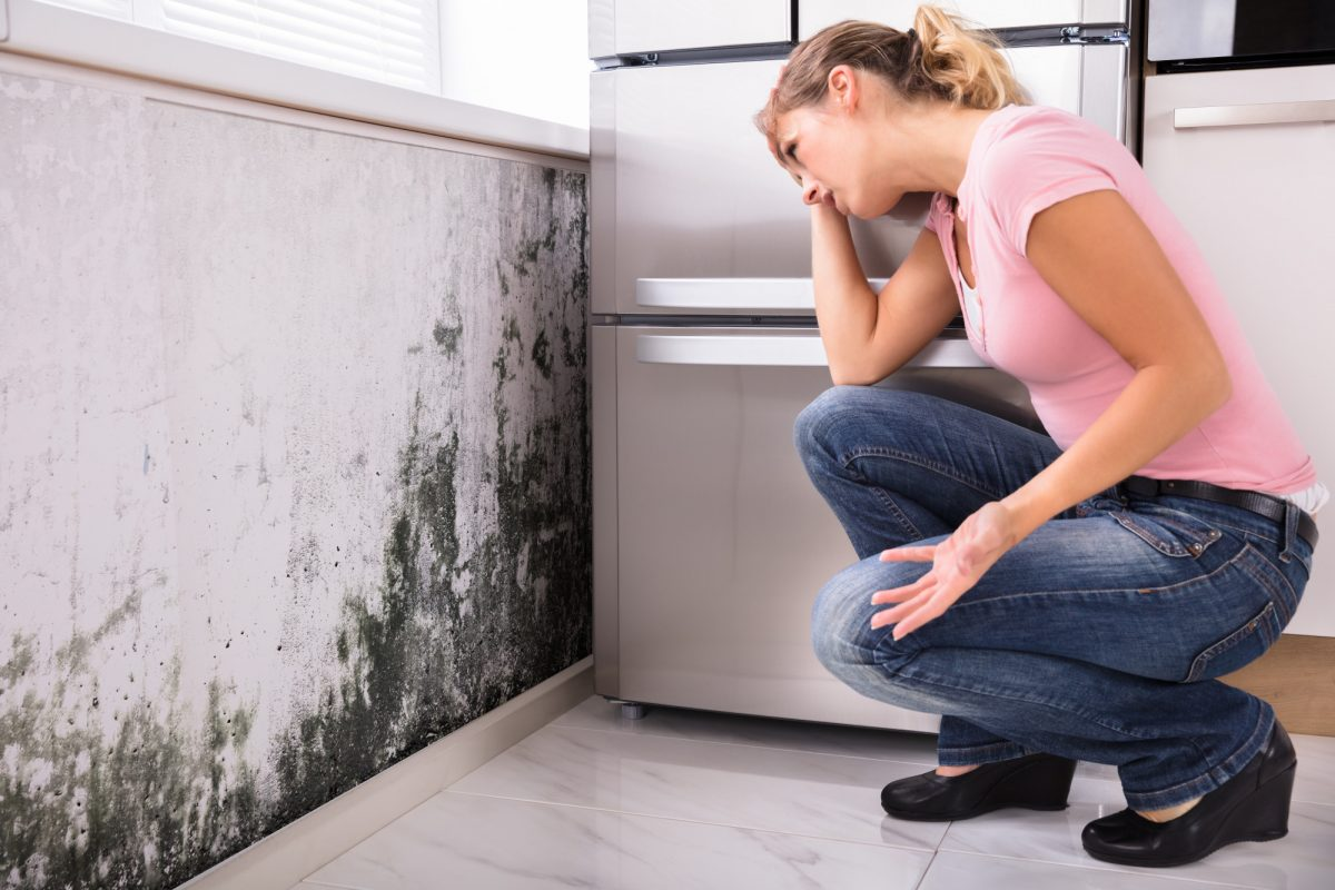 The Hidden Dangers of Mold and Mildew in Your Home